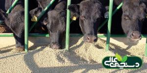 مدیریت نیتروژن اوره ای شیر