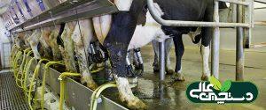 سامانه شیردوش گاوداری و تمامی اجزای مرتبط با آن باید دائماً تحت بازرسی و کنترل باشند تا از درستی عملکرد سامانه و استحصال شیر سالم اطمینان داشته باشید.