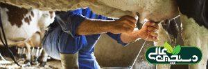 سالن شیردوشی گاوداری و فرآیند شیردوشی را کنترل کنید